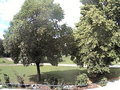 Webcam im Freibad Blaubeuren